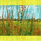 """""""Doing the Happy Dance"""" Scarf~Textured Yellow Borders by Susan Werby"""