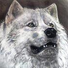 white wolf by Jonesy7
