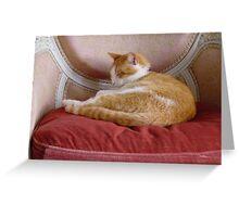 Chateau kitty Greeting Card
