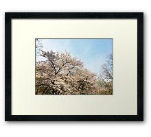 8 Bit Pixel Sakura Framed Print