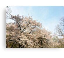 8 Bit Pixel Sakura Metal Print