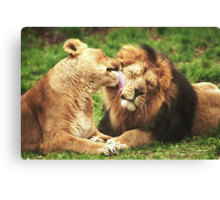 Pure Love! Canvas Print