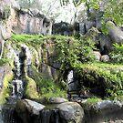 Waterfalls by Dan Shiels