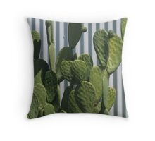 Cactus and Corrugated Tin Throw Pillow