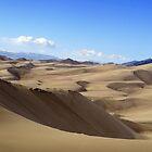 The Dune Field by Fletcher Hill
