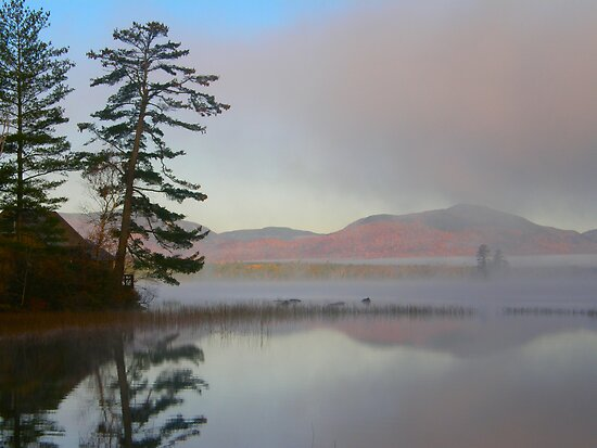 Mist-ical Reflections by Judith Hayes