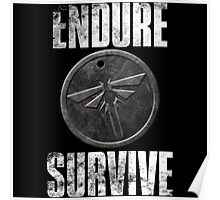 Endure and Survive Poster