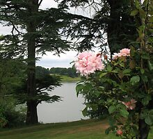 A view of the lake at Blenheim palace by leelee