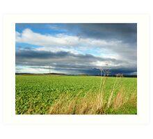 Scottish Countryside Art Print