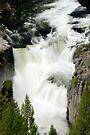 Lower Mesa Falls - Idaho by Stephen Beattie
