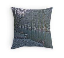 River Dove Throw Pillow