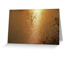 """""""SILHOUETTES IN GOLD"""" SETS OF TWO   Greeting Card"""