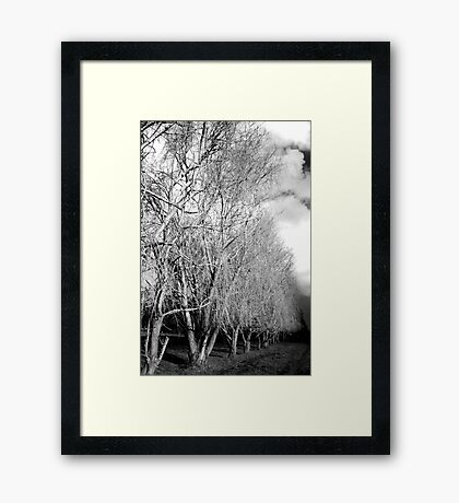 The Back Road #1 Framed Print