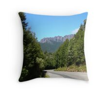 Windscreen View Throw Pillow