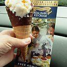 Cheshire Ice Cream Farm by AnnDixon