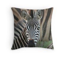 Zebra at sunset Throw Pillow