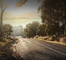 Cunungra Light by Murray Swift