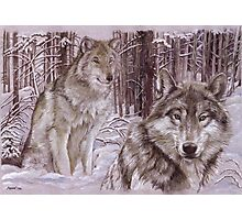 Wolves in the Snow Photographic Print