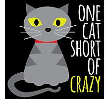 One cat short of crazy Photographic Print