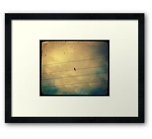 Like a bird on a wire... Framed Print