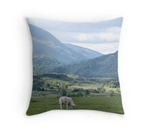 So much green and only one little sheep Throw Pillow