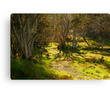 Morning, Dinner Plain Victorian High Country Canvas Print