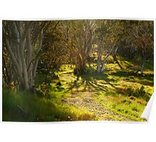 Morning, Dinner Plain Victorian High Country Poster