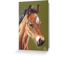 Foal #2 Greeting Card