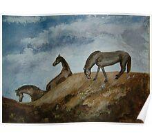 Mustang Morning Poster
