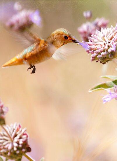 Golden Moment by Susan Gary
