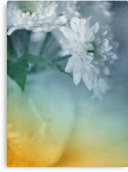 Whispery White Vintage in Vase by Susan Gary
