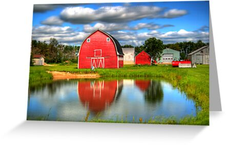 Country Barnyard by Larry Trupp