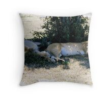 Lazy lions Throw Pillow