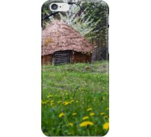 Spring landscape with straw bale house iPhone Case/Skin