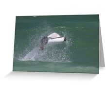 Flying Spotted eagle ray Greeting Card