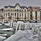 Ice Age Geneva 2012 by David Freeman
