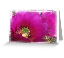 Hedgehog Cactus Bloom Greeting Card