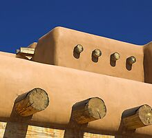 New Mexico Detail by Tamas Bakos