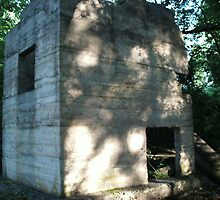Sawdust Bunker WITH GHOST ON ITS WALLS!! by linmarie