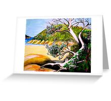Norman Bay, Wilson's Promontory. Greeting Card