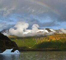 Break away peace of Portage Glacher, Portage Bay, AK by mccullot