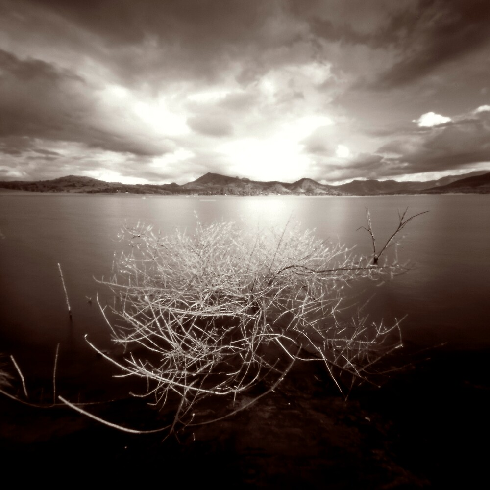 Lake Moogerah by Sue Hammond