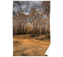 Beechworth Fire 2009 Poster