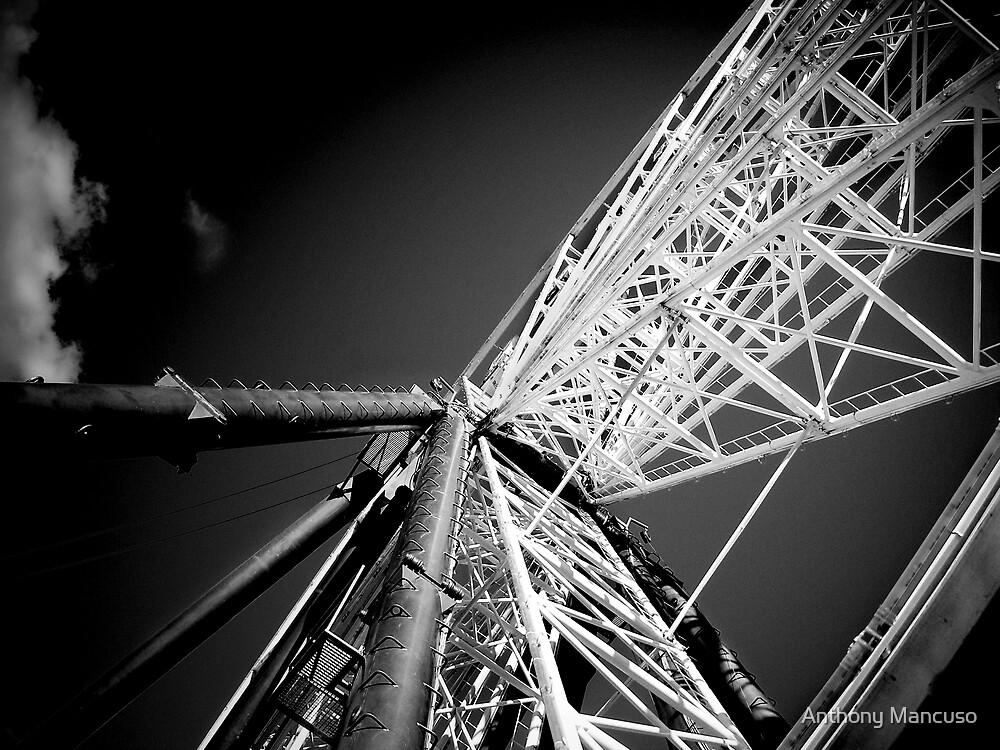 wheel by Anthony Mancuso