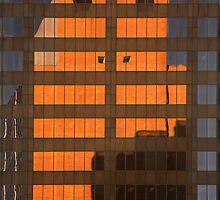 Shadow by Olga Zvereva