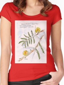 Acacia karroo - Botanical Women's Fitted Scoop T-Shirt