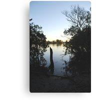 Manning Mangrove Canvas Print