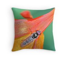 hoverfly #3 Throw Pillow