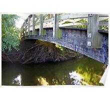 Tree Root Study VIII, or Bridge V Poster