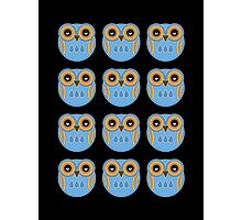 Blue Owls Photographic Print